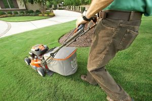 Lawncare and Landscaping Insurance | Workers Compensation Shop Blog